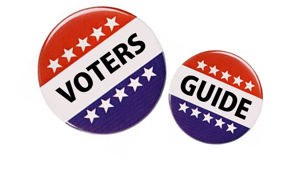 Voter's Guide - Buttons