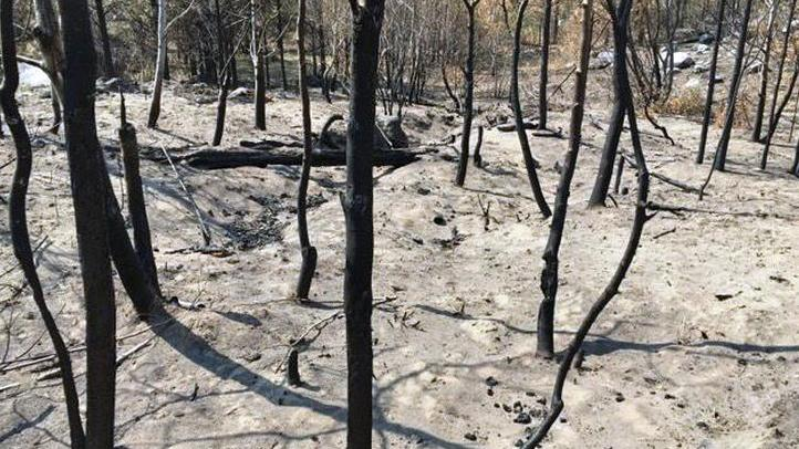 Residents invited to Dec. 15 post-wildfire meeting image