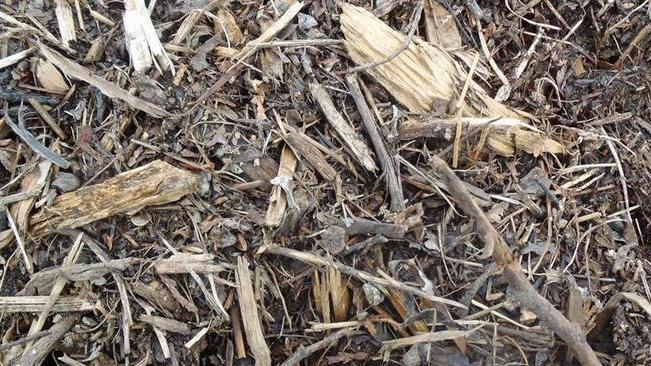 Need wood chips? Pick them up at the Chelan Transfer Station